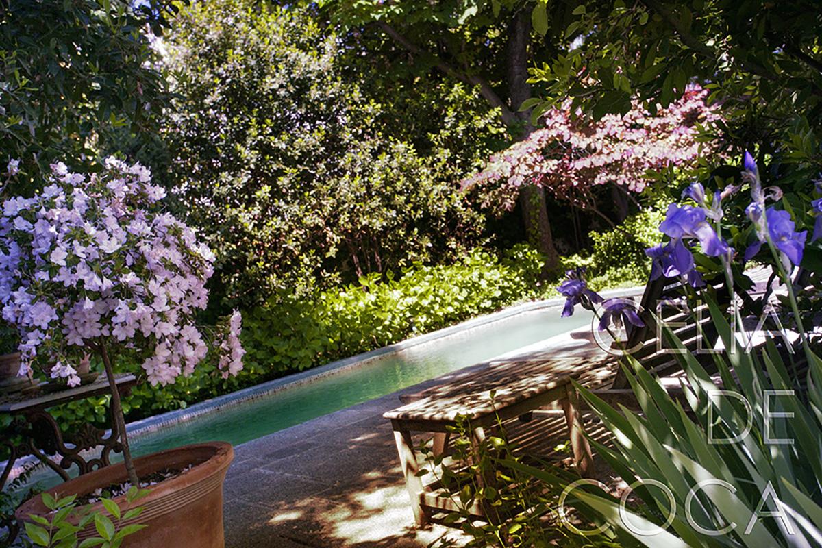 Paisajismo: Jardín diseñado por Caroline Wiggin fotografiado por Celia de Coca
