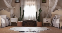 dormitorio infantil doble cactus – fotografia interiorismo – fotografia decoracion – celia de coca